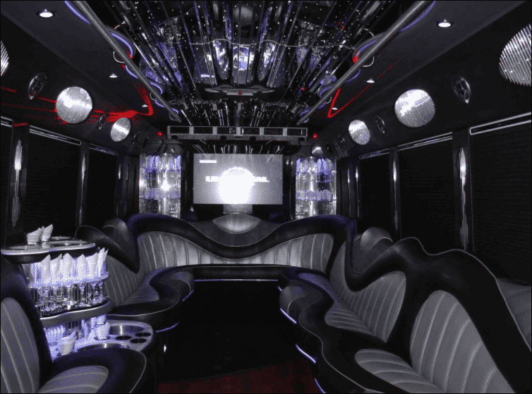 15 passenger party bus rental - Unlimited Charters