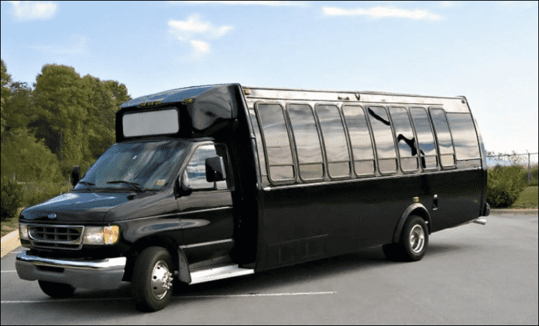 20 Passenger Party Bus Rental - Unlimited Charters