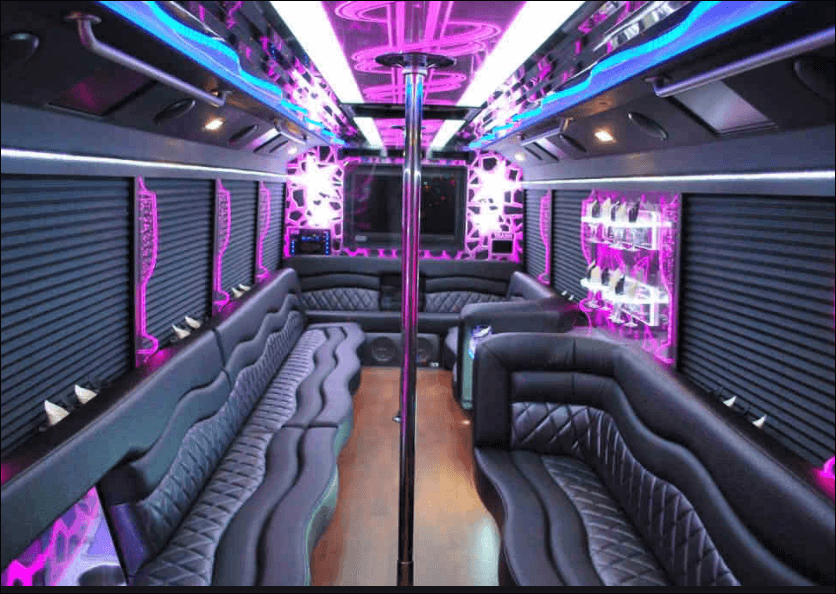 24 Passenger Party Bus Rental - Unlimited Charters