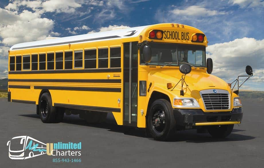 school-bus-rental-out